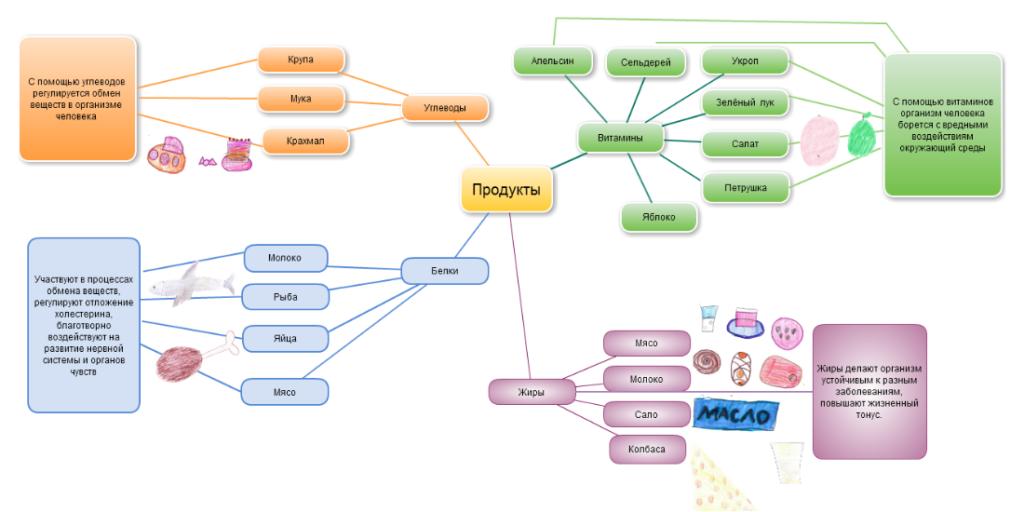 Схема распределения продуктов на жиры, белки, углеводы и витамины