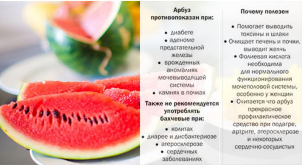 Польза и противопоказания употребления арбуза