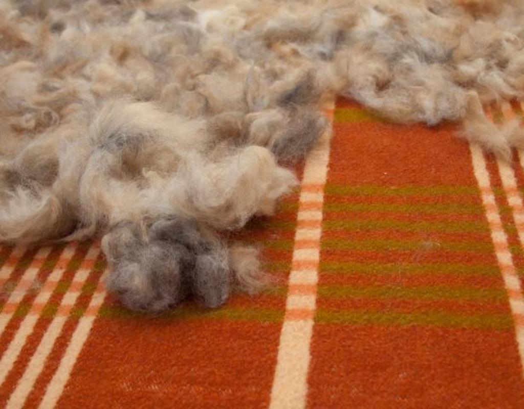 Шерсть на ткани