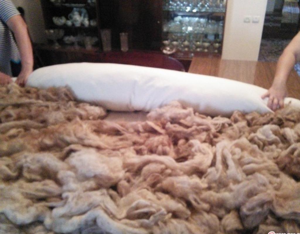 Шерсть, одеяло, руки